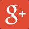 Logo Google+ für Sascha